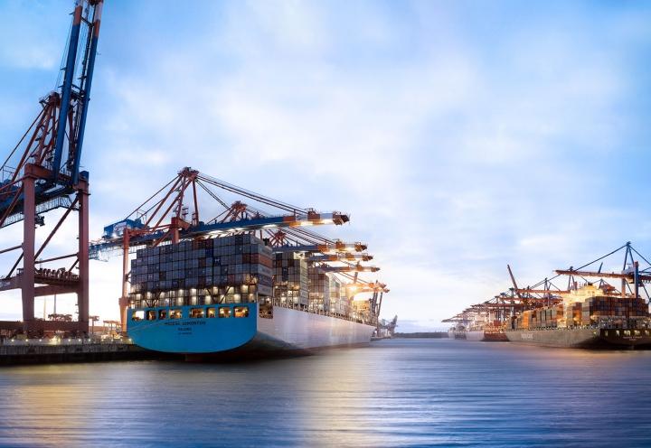 Containerschiffe bei Entladung im Hamburger Hafen