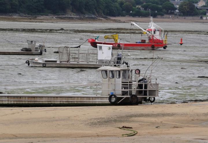 Austernboote bei Niedrigwasser in der Bucht von Paimpol